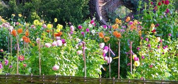 Parc Floral de La Source, Orléans © C. Mouton