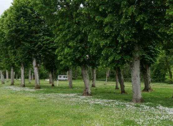 45_Loiret_Chatillon-Coligny_Aire_CampingCarPark_Aire3