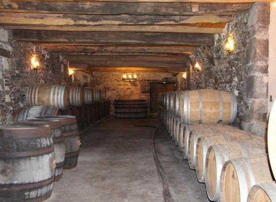 2016-chaisbarriques-nanteswinetour-saintfiacresurmaine-44-levignobledenantes