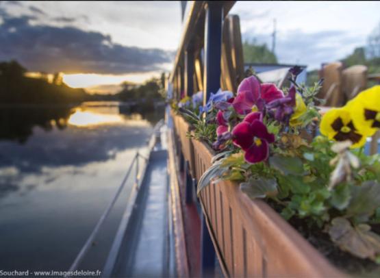 Peniche-hotel-Le-Nymphea---Tourisme-fluvial-en-Val-de-Loire--JF-Souchard---www