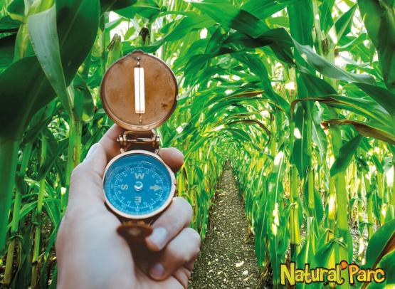 NaturalParc-E-Sprit-labyrinthe végétal