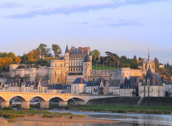 château royal Amboise (2)