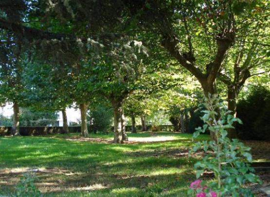 arboretum1-Genille-valdeloire