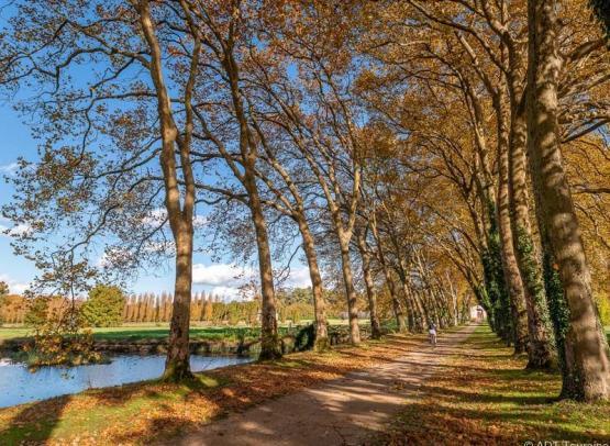parc_de_richelieu_france_2