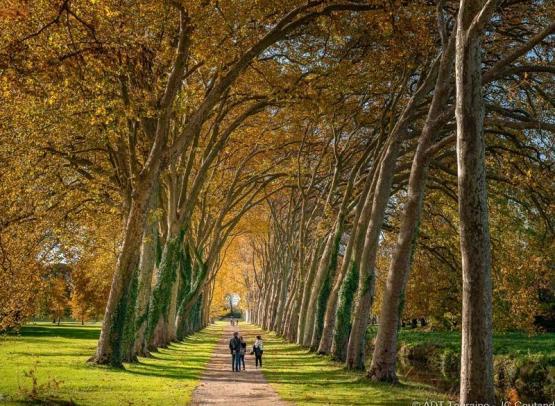 parc_de_richelieu_france_3