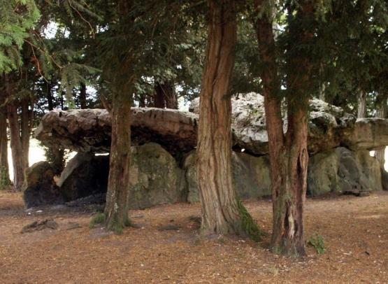 dolmen_roche_aux_fees_saint-antoine-du-rocher