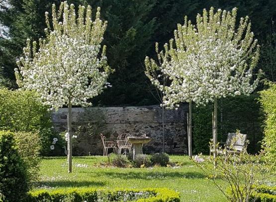 Jardin-des-Langottières-Cheviré-le-Rouge-Baugeois-Vallée-6