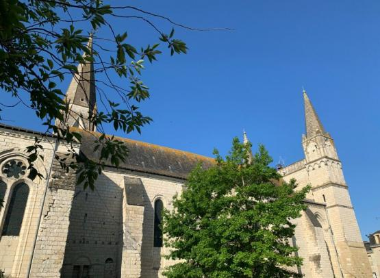Collegiale_Le_Puy_Notre_Dame-Aude_GENEVAISE___SPL_SVLT-35269-1200px