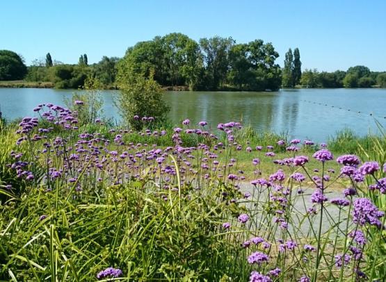 plan-eau-du-chene-st-julien-de-concelles-44-levignobledenantes-tourisme