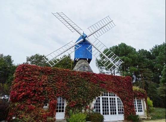 moulin-bleu-bourgueil