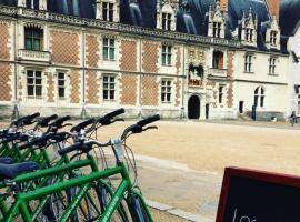 La Salamandre location vélos Blois