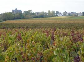 domaine-viticole-du-roty-saint-herblon-vair-sur-loire-44-DEG-1