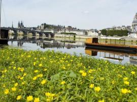 Bateau-de-Loire-Blois-Cecile-Marino-ADT41--2-