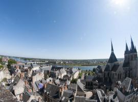 (1)vue-ville-de-blois©CDT41-Mir-Photo-2012