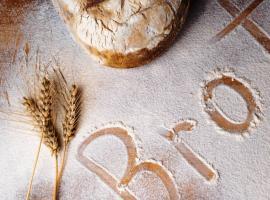 Ateleir pain2 -Ecomusée Vigneux