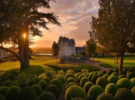 château royal Amboise (5)
