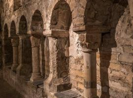 visite-guidee-crypte-saint-aignan-a-orleans